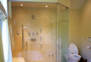 Glass shower with frameless shower door
